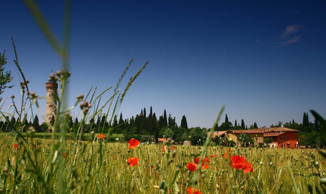 Desenzano_del_Garda,_Province_of_Brescia,_Italy_-_panoramio