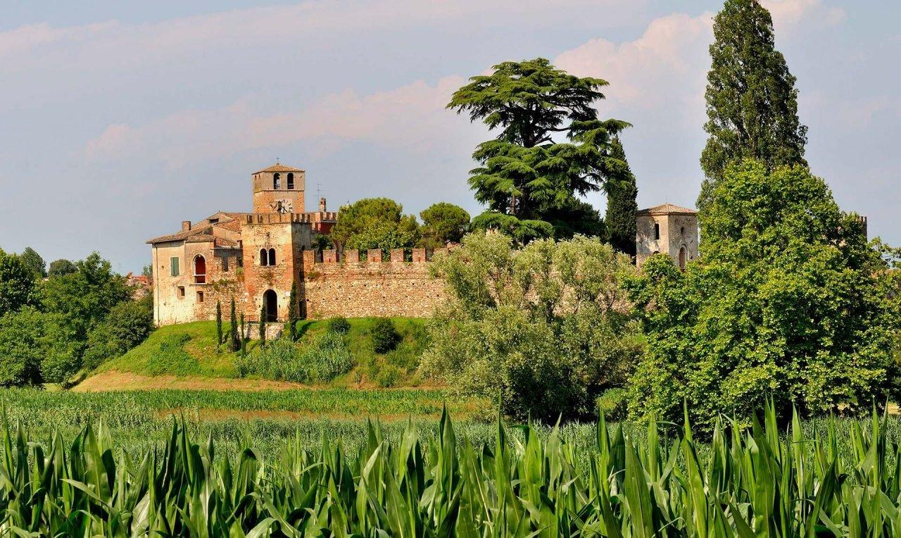 Castellaro_Lagusello_-_panoramio
